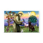 St Francis Chocolate Lab Rectangle Car Magnet