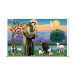St Francis/3 dogs Rectangle Car Magnet