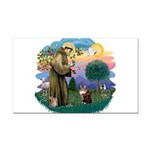St. Fran (ff) - Maine Coon (# Rectangle Car Magnet