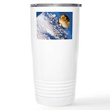 Female snow bunting - Travel Mug