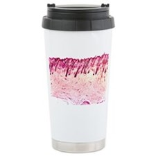 Skin tissue, light micrograph - Ceramic Travel Mug