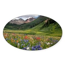Alpine flowers in Rustler's Gulch - Decal