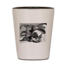 Boxer Dog Shot Glass