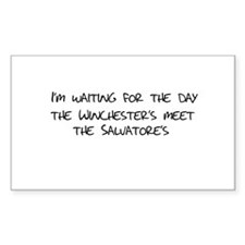 Winchesters meet the Salvatores Decal