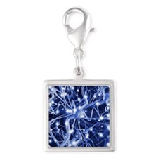 Neural network - Silver Square Charm