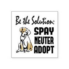 "Spay Neuter Adopt Square Sticker 3"" x 3"""