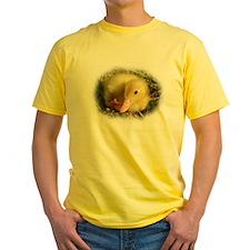 Baby Duckling T
