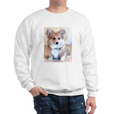 Too Cute Puppy Sweatshirt