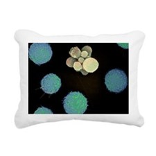 Cell death, SEM - Rectangular Canvas Pillow