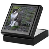 Purr-fectly Posed Keepsake Box