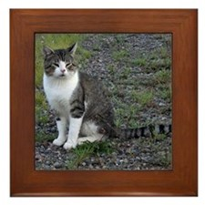 Purr-fectly Posed Framed Tile