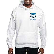 Small Official Logo Hooded Sweatshirt