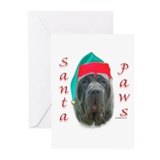 Santa Paws Neo Greeting Cards (Pk of 10)