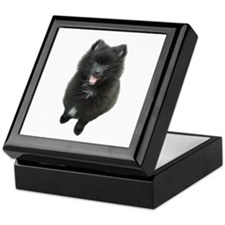 Adorable Black Pomeranian Puppy Dog Keepsake Box
