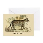 Ocelot Greeting Cards (Pk of 20)