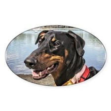 Doberman at Lake Ella Decal