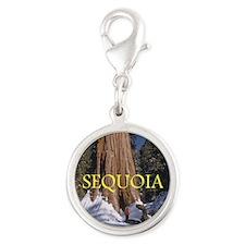 ABH Sequoia Silver Round Charm