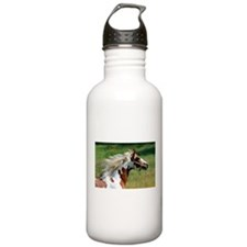 My Paint Horse Profile Water Bottle