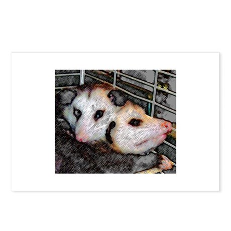 Possum Love Postcards (Package of 8)