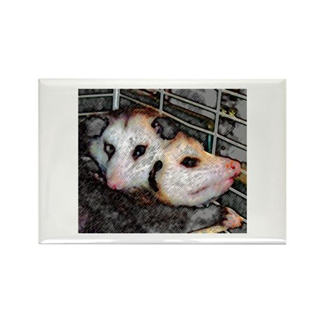 Possum Love Rectangle Magnet