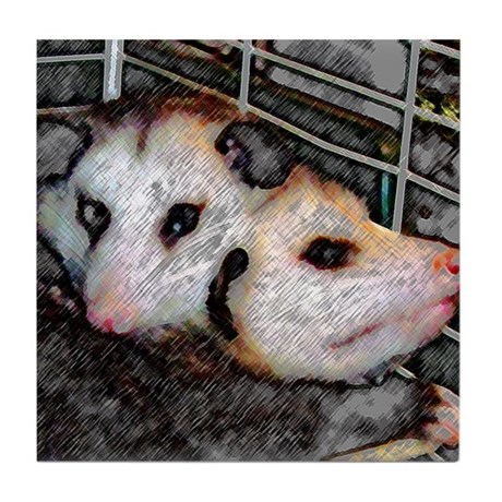 Possum Love Tile Coaster