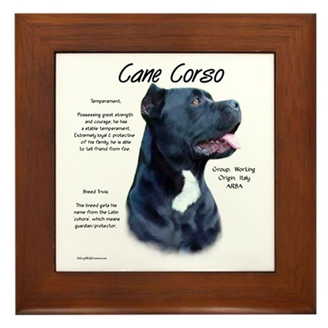 Cane Corso Framed Tile