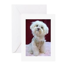 2-Whispering Pet Photography 008 Greeting Cards