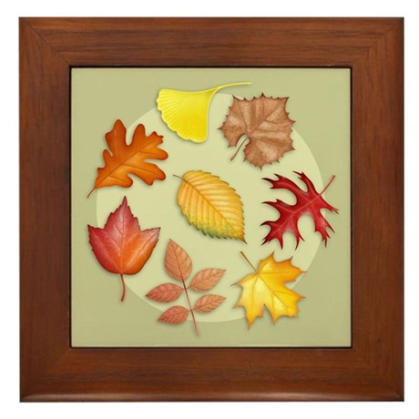 Leaves Framed Tile