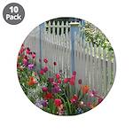 Tulips Along White Picket Fence 3.5