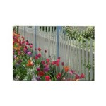 Tulips Along White Picket Fence Rectangle Magnet (