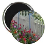 Tulips Along White Picket Fence Magnet