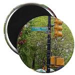 Central Park street sign Magnet