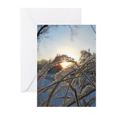 Snowflakes on Grass Greeting Cards (Pk of 20)