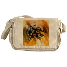 Mexican red-leg tarantula - Messenger Bag