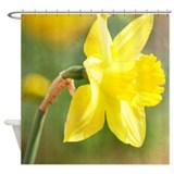 Yellow Daffodil Flower Shower Curtain