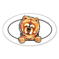 Chow Chow Peeking Bumper Decal