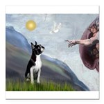 Boston Terrier 3 - Creation of Man Square Car Magn
