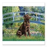 Bridge - Chocolate Lab 11.png Square Car Magnet 3""