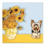 MP-Sunflowers - Yorkshire Terrier 17.png Square Ca