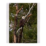 American Bald Eagle #1 Throw Blanket