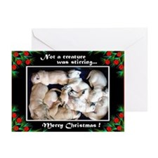 Yellow Lab Puppy Christmas Cards (Pk of 10)
