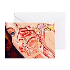Greeting Card - Artwork of ear, nose