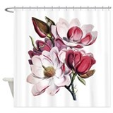 magnolia_flowers_shower_ ...