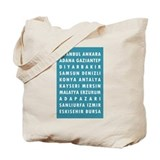 Teal Turkey Cities Tote Bag