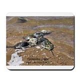 HORSESHOE CRAB Mousepad