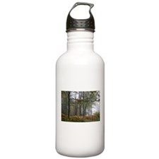 Fall Morning in the Forest Water Bottle
