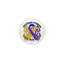 Destroy Bladder Cancer Mini Button