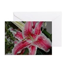 PINK LILY Greeting Cards (Pk of 10)
