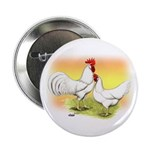 White Leghorn Chickens Button