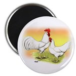 White Leghorn Chickens Magnet